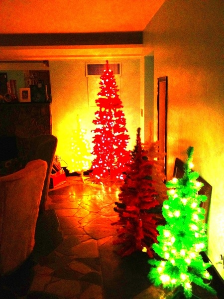 Gettin ready for Christmas!!!