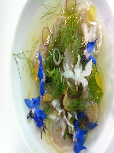 Laja: chef Jair made geoduck ceviche w olive oil, lime, buddha hand citrin,fennel fronds,cil,flowers from garden.