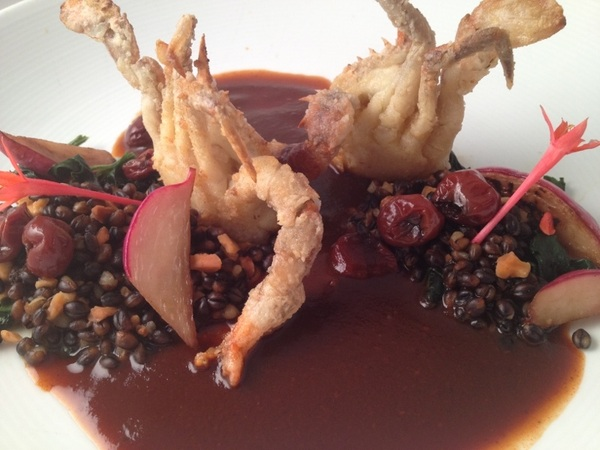 NewTopoloTasting:dishes inspired by r Oax art collection:s/s crab,ancho cherry sauce,bl barley,verdolagas,teq cherries