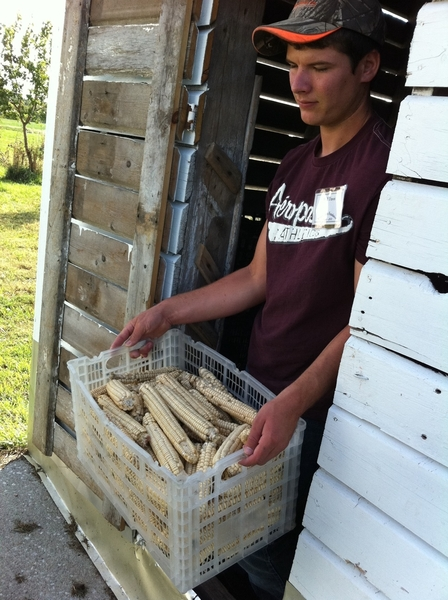 Will Travis with a little of their harvest of rescued heirloom Iroquois white corn. They parch it &amp; stone-grind it