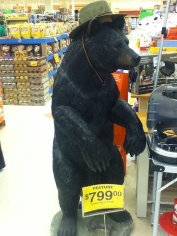 Ok like, seriously #FredMeyer #Anchorage - have you lost yur fucking mind??