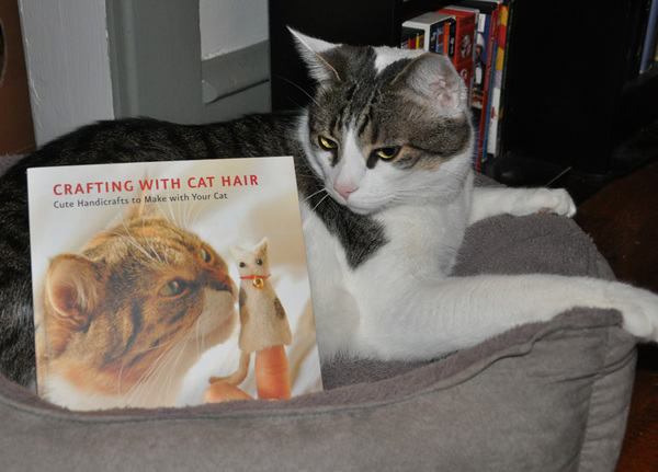 Crafting wif Cat Hair Book pwize fur #SCIFIpawty from @quirkbooks
