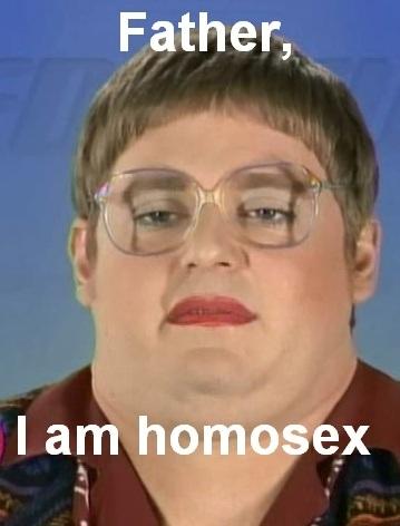 biblical reference gay