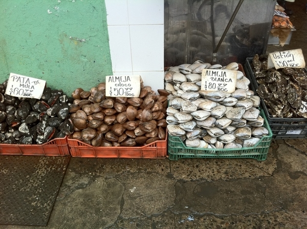 Ensenada Seafood Mkt: chocolata, pismo & pata de mula clams, plus local oysters